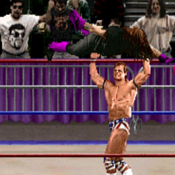 Retro WWF Game Tournament